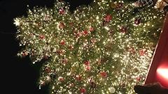 神田キャバクラ【ムーミン(mu-minn)】東京JK制服ラウンジ さい メリークリスマス